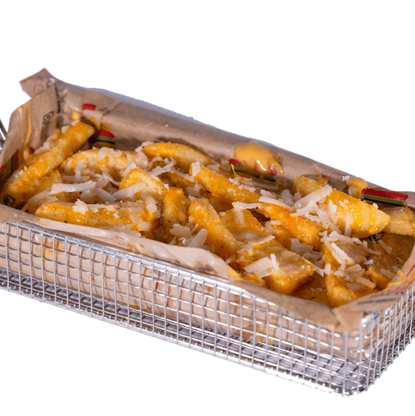 The cheesy cheese loaded fries